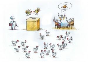 alegeri elections (2)
